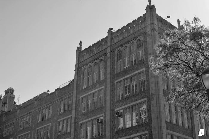 Harlem Series-4